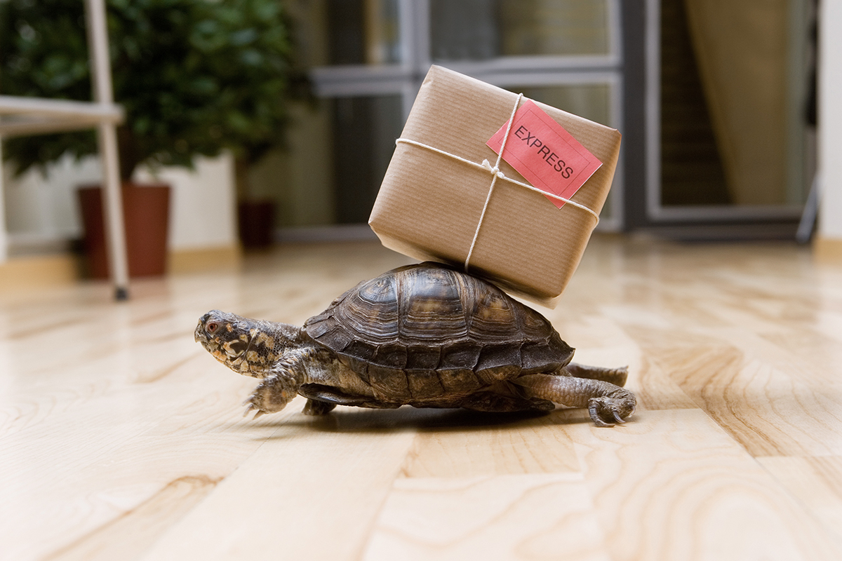 5 Things that Slow Down your Credentialing Process